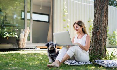 kantoor in de tuin